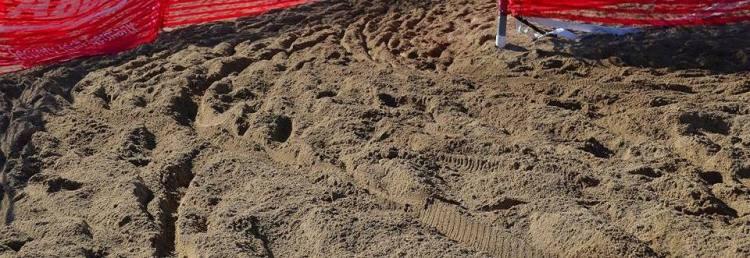 Montrose...Sand. Photo Courtesy of Corey Brink